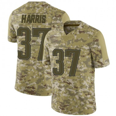 Men's Nike New England Patriots Damien Harris 2018 Salute to Service Jersey - Camo Limited